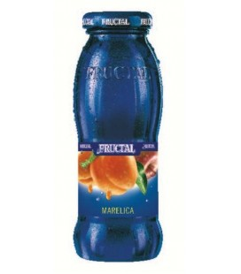 Fructal Apricot juice 200mlx12